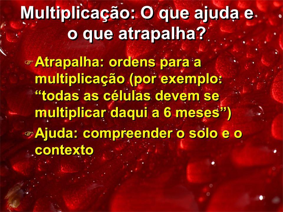 Multiplicação: O que ajuda e o que atrapalha? F Atrapalha: ordens para a multiplicação (por exemplo: todas as células devem se multiplicar daqui a 6 m