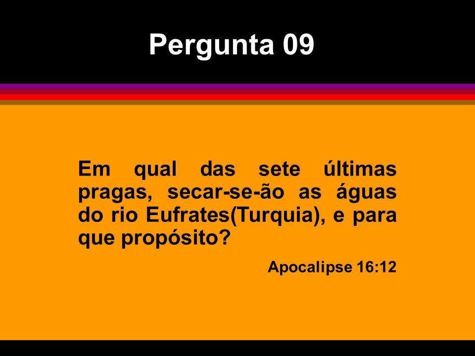 Em qual das sete últimas pragas, secar-se-ão as águas do rio Eufrates(Turquia), e para que propósito? Apocalipse 16:12 Pergunta 09