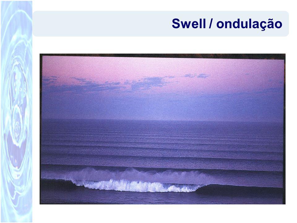 Resumo WWIII –Geração e propagação de ondas em grandes domínios (escala oceânica) SWAN –Geração e propagação de ondas em domínios de diferentes escalas.