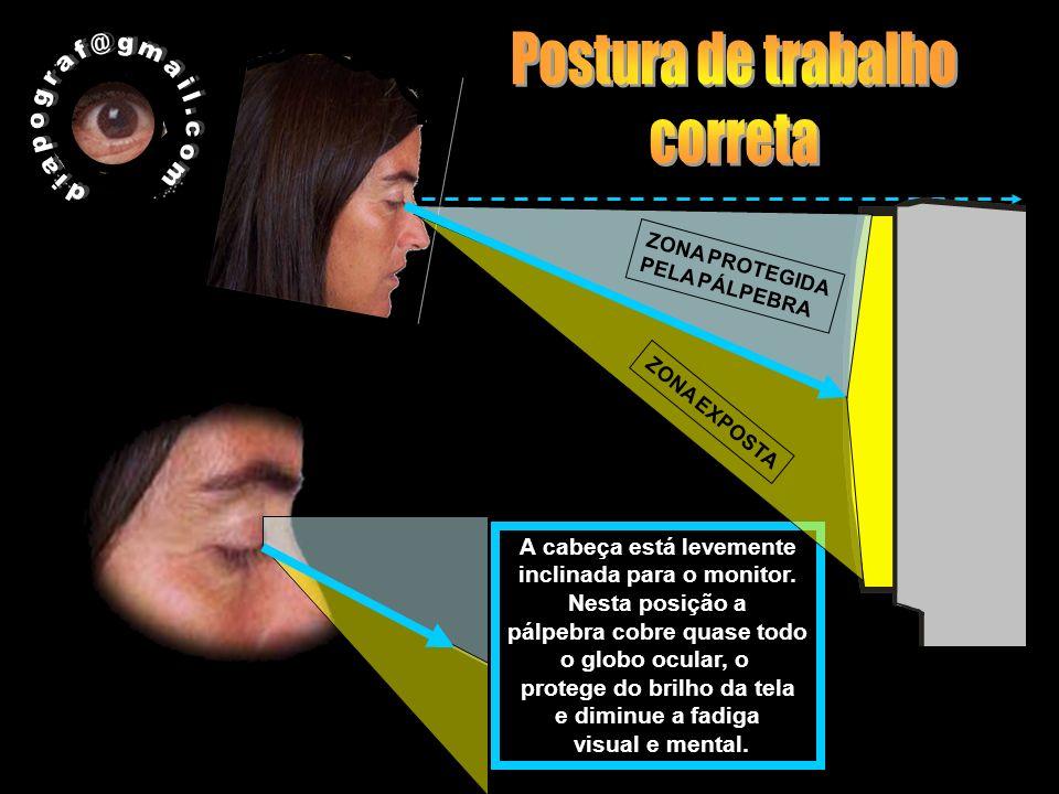 A cabeça está levemente inclinada para o monitor. Nesta posição a pálpebra cobre quase todo o globo ocular, o protege do brilho da tela e diminue a fa