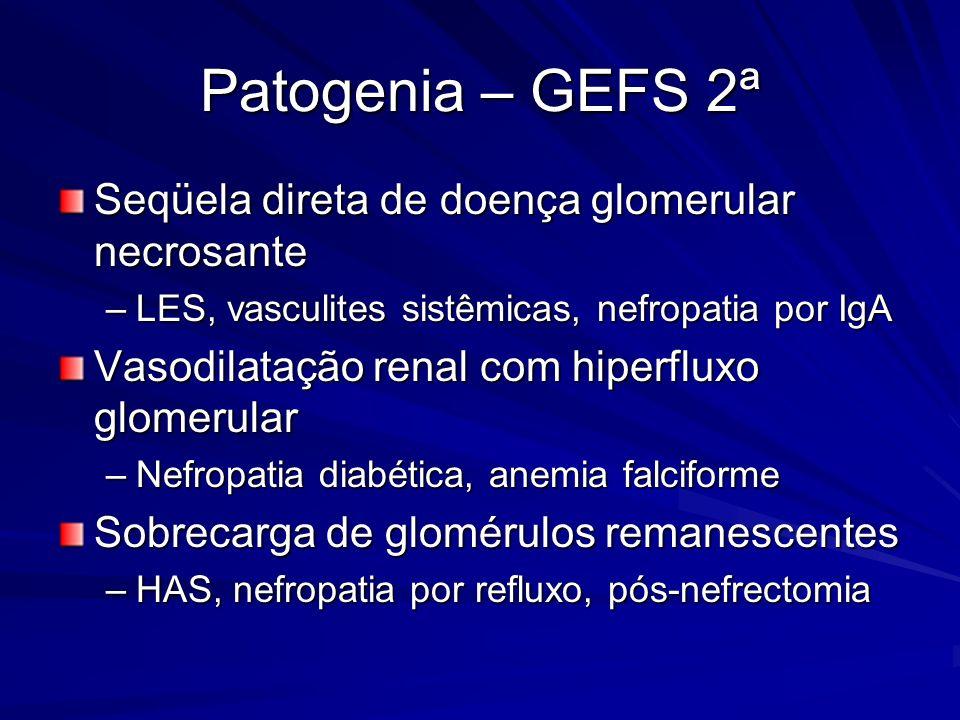 Patogenia – GEFS 2ª Seqüela direta de doença glomerular necrosante –LES, vasculites sistêmicas, nefropatia por IgA Vasodilatação renal com hiperfluxo