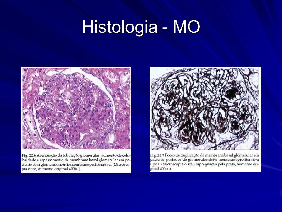 Histologia - MO