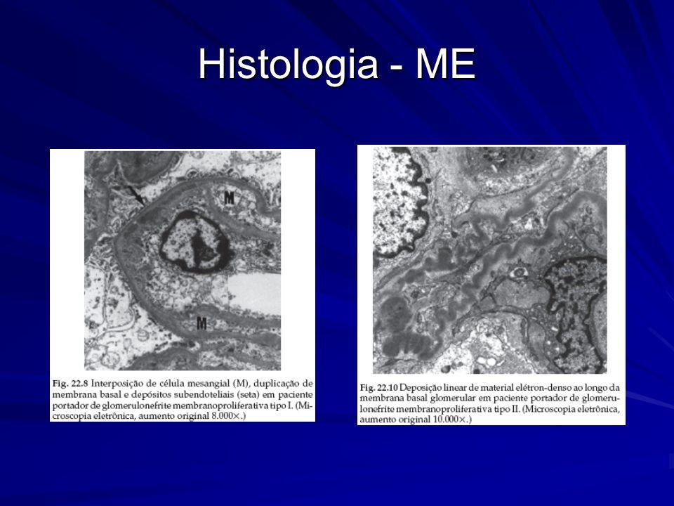 Histologia - ME