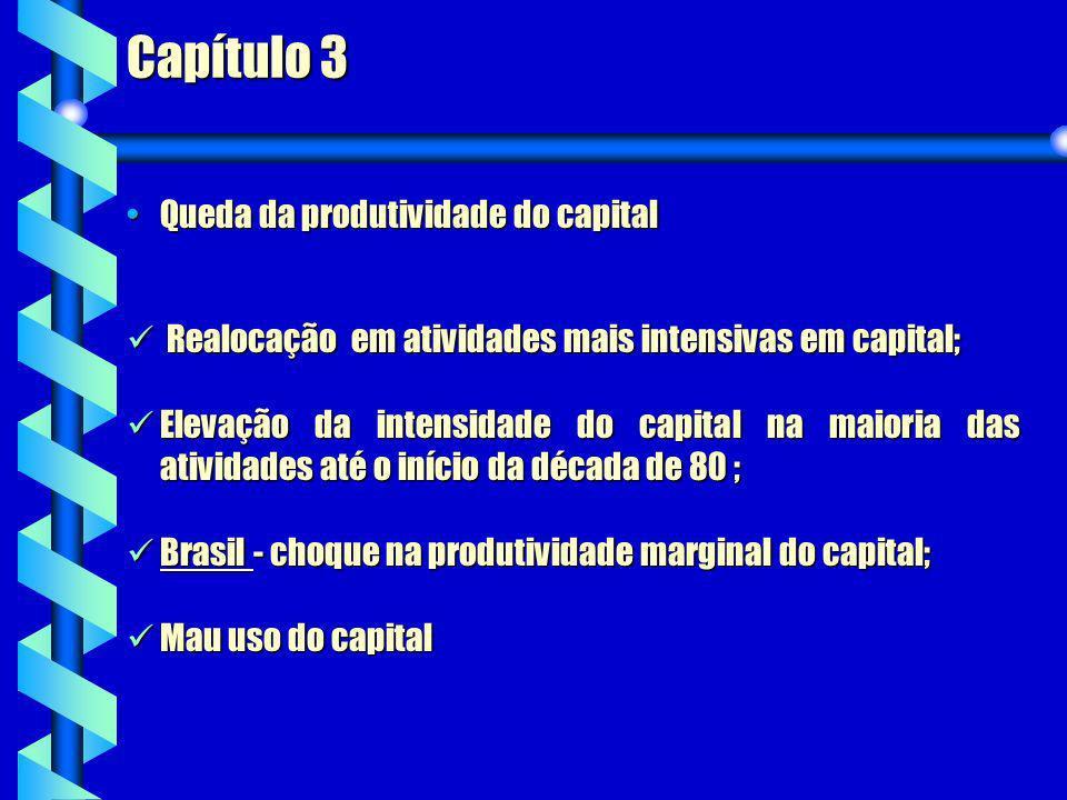 Capítulo 3 Realocação em atividades mais intensivas em capital; Realocação em atividades mais intensivas em capital; Elevação da intensidade do capita