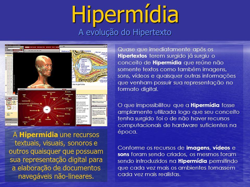 Quase que imediatamente após os Hipertextos terem surgido já surgiu o conceito de Hipermídia que reúne não somente textos como também imagens, sons, v