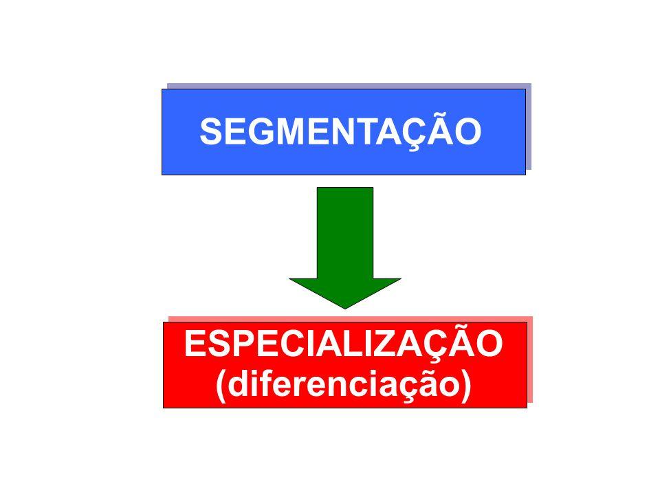 SEGMENTAÇÃO ESPECIALIZAÇÃO (diferenciação)