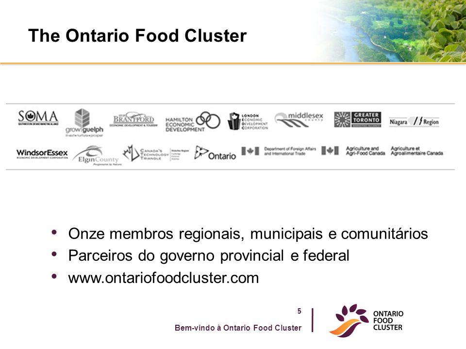 The Ontario Food Cluster 5 Bem-vindo à Ontario Food Cluster Onze membros regionais, municipais e comunitários Parceiros do governo provincial e federa