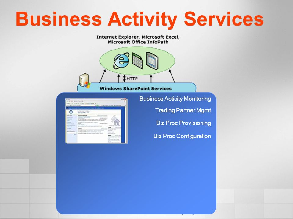 Business Activity Services Business Acticity Monitoring Trading Partner Mgmt Biz Proc Provisioning Biz Proc Configuration