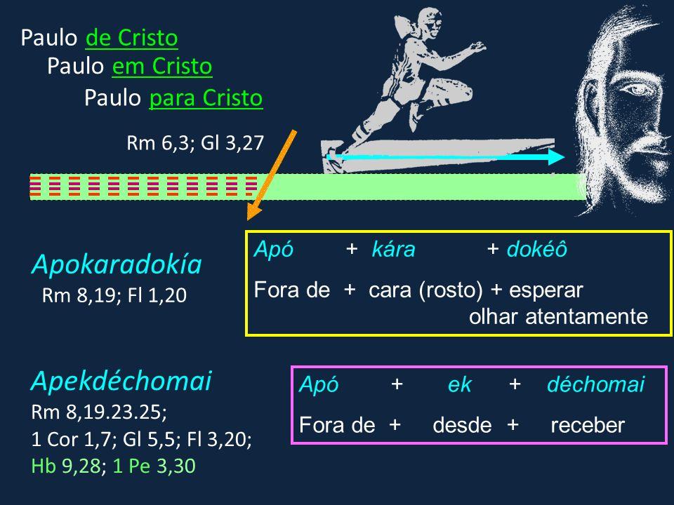 Apó + kára + dokéô Fora de + cara (rosto) + esperar olhar atentamente Apó + ek + déchomai Fora de + desde + receber Apokaradokía Rm 8,19; Fl 1,20 Apek