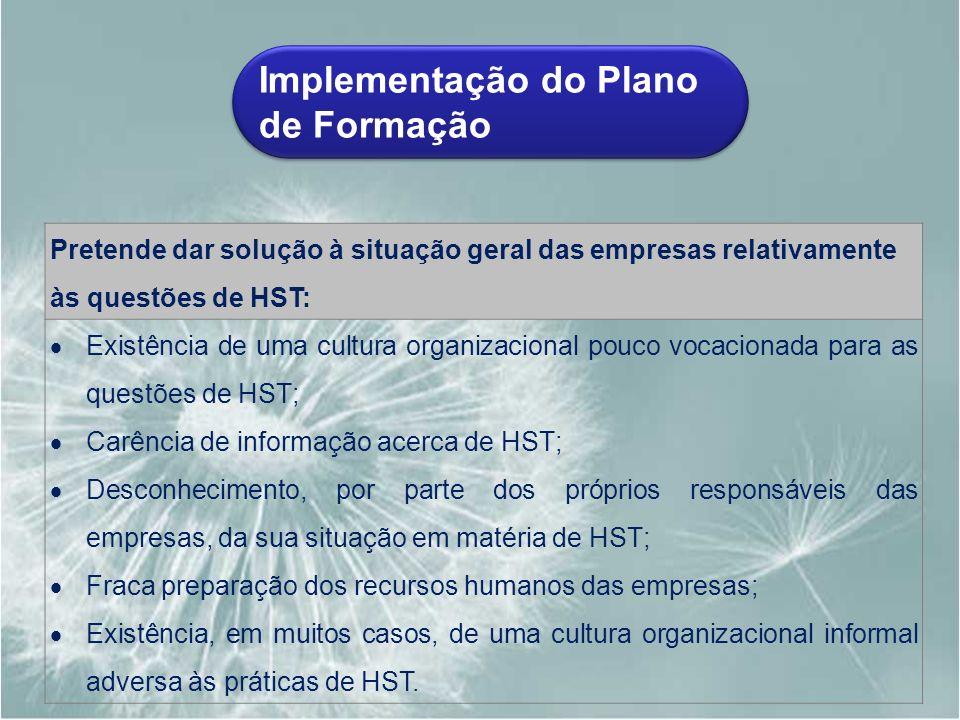 Implementação do Plano de Formação Pretende dar solução à situação geral das empresas relativamente às questões de HST: Existência de uma cultura orga
