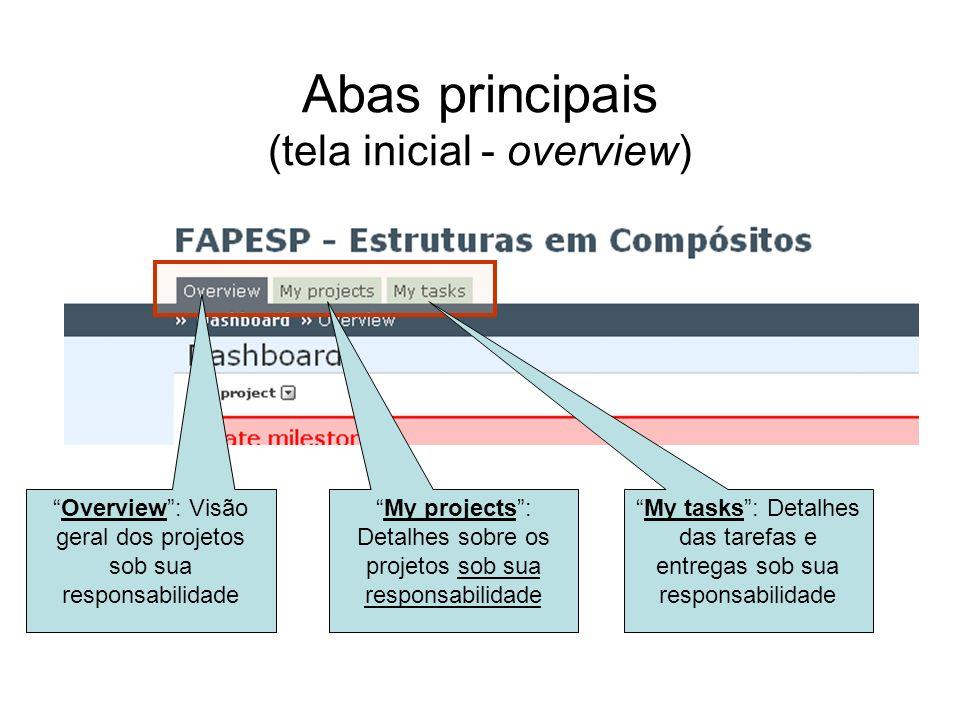 Abas principais (tela inicial - overview) Overview: Visão geral dos projetos sob sua responsabilidade My projects: Detalhes sobre os projetos sob sua