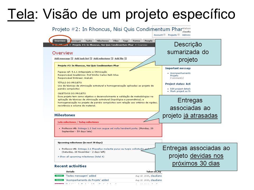 Tela: Visão de um projeto específico Entregas associadas ao projeto devidas nos próximos 30 dias Descrição sumarizada do projeto Entregas associadas a