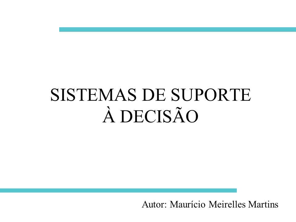 SISTEMAS DE SUPORTE À DECISÃO Autor: Maurício Meirelles Martins