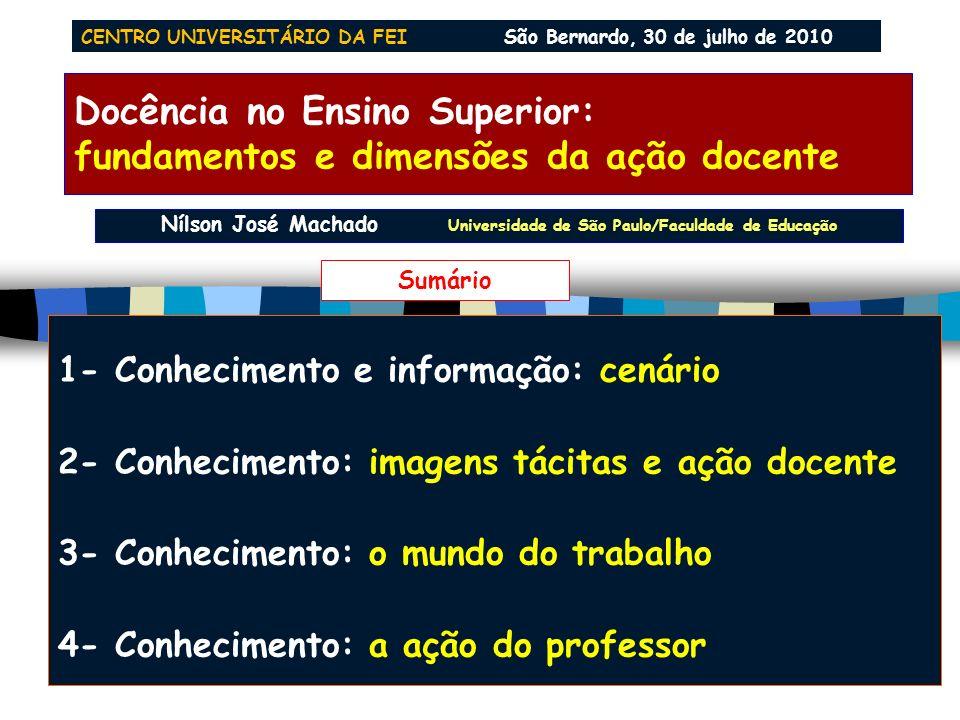 Docência no Ensino Superior: fundamentos e dimensões da ação docente Nilson José Machado Faculdade de Educação Universidade de São Paulo njmachad @ us