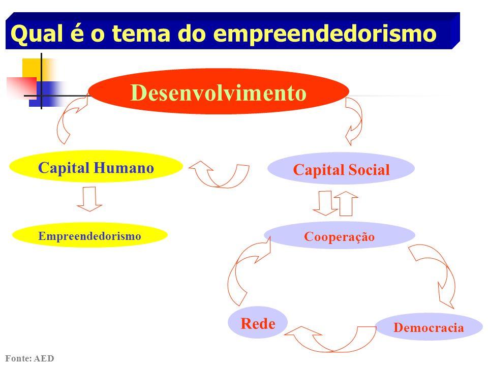 Desenvolvimento Capital Humano Capital Social Empreendedorismo Rede Democracia Cooperação Fonte: AED Qual é o tema do empreendedorismo