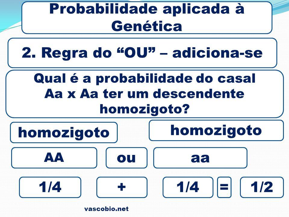 vascobio.net Probabilidade aplicada à Genética 2. Regra do OU – adiciona-se Qual é a probabilidade do casal Aa x Aa ter um descendente homozigoto? 1/4