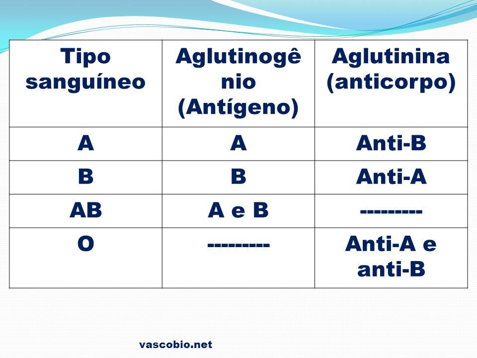 vascobio.net Tipo sanguíneo Aglutinogê nio (Antígeno) Aglutinina (anticorpo) AAAnti-B BBAnti-A ABA e B--------- O Anti-A e anti-B