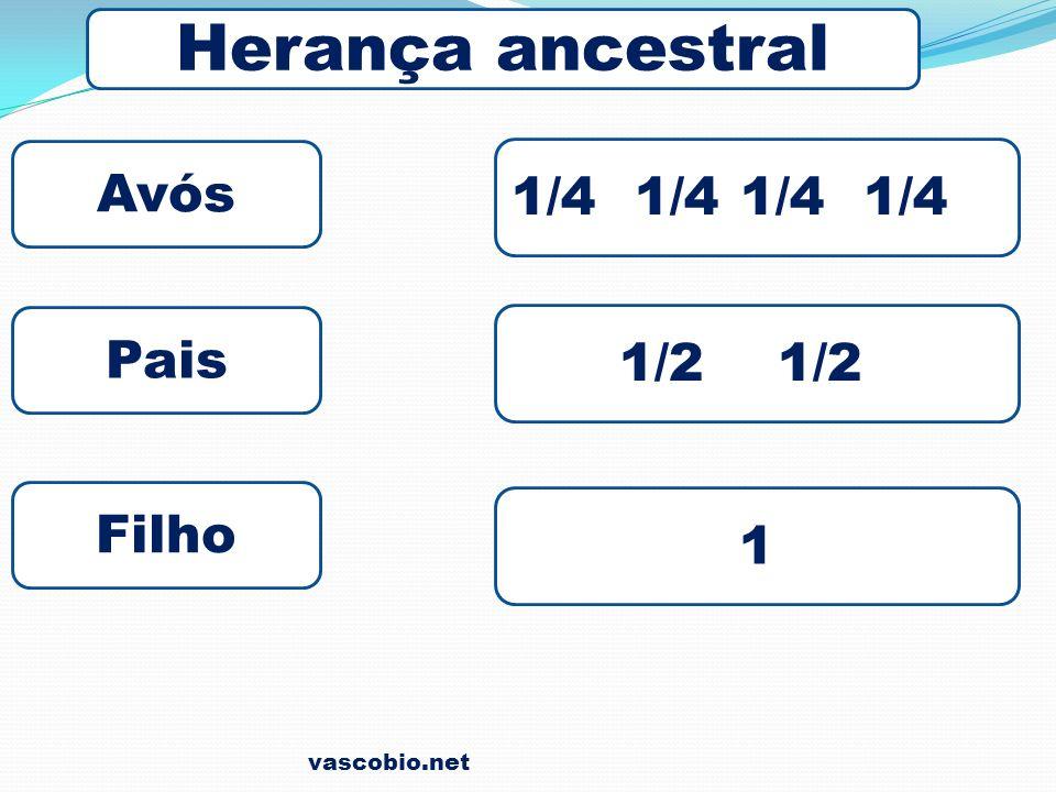 vascobio.net Proporção do diibridismo 9 D/D 3 D/R 3 R/D 1 R/R Amarela/ lisa Amarela/ rugosa Verde/ lisa Verde/ rugosa