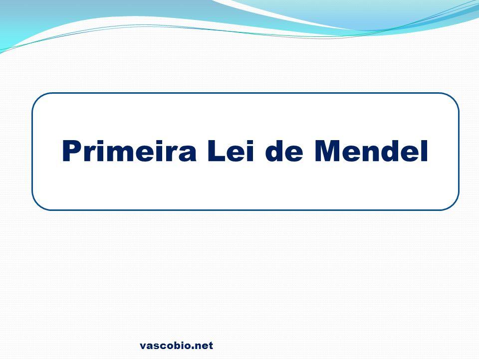 vascobio.net Primeira Lei de Mendel