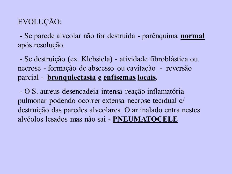 EVOLUÇÃO: - Se parede alveolar não for destruída - parênquima normal após resolução. - Se destruição (ex. Klebsiela) - atividade fibroblástica ou necr