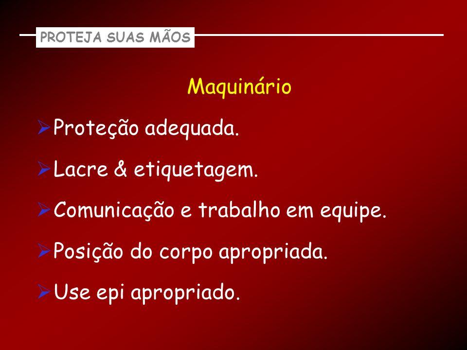 PROTEJA SUAS MÃOS Maquinário Proteção adequada. Lacre & etiquetagem. Comunicação e trabalho em equipe. Posição do corpo apropriada. Use epi apropriado