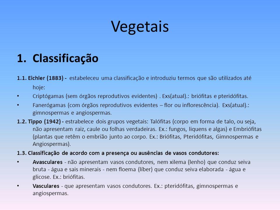 Vegetais 1.Classificação 1.1. Eichler (1883) - estabeleceu uma classificação e introduziu termos que são utilizados até hoje: Criptógamas (sem órgãos