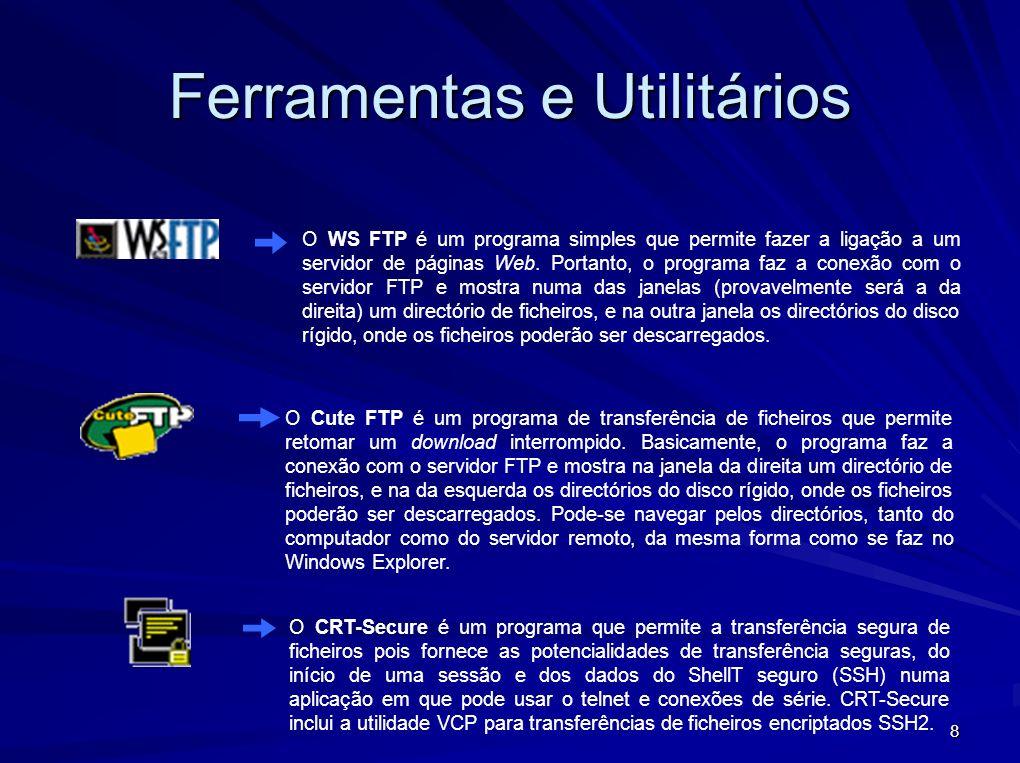 8 O WS FTP é um programa simples que permite fazer a ligação a um servidor de páginas Web. Portanto, o programa faz a conexão com o servidor FTP e mos