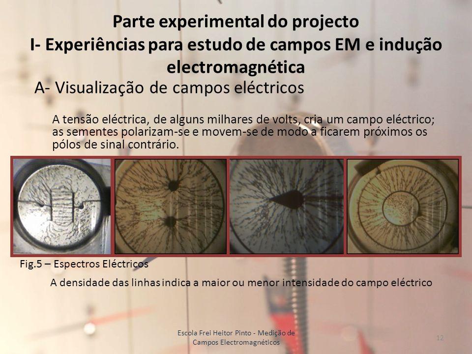 Parte experimental do projecto I- Experiências para estudo de campos EM e indução electromagnética A- Visualização de campos eléctricos A tensão eléct