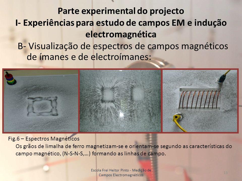 Parte experimental do projecto I- Experiências para estudo de campos EM e indução electromagnética B- Visualização de espectros de campos magnéticos d