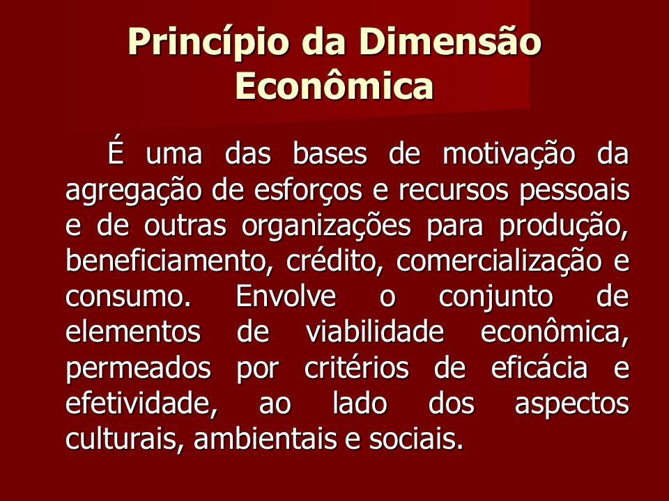 Princípio da Dimensão Econômica É uma das bases de motivação da agregação de esforços e recursos pessoais e de outras organizações para produção, beneficiamento, crédito, comercialização e consumo.