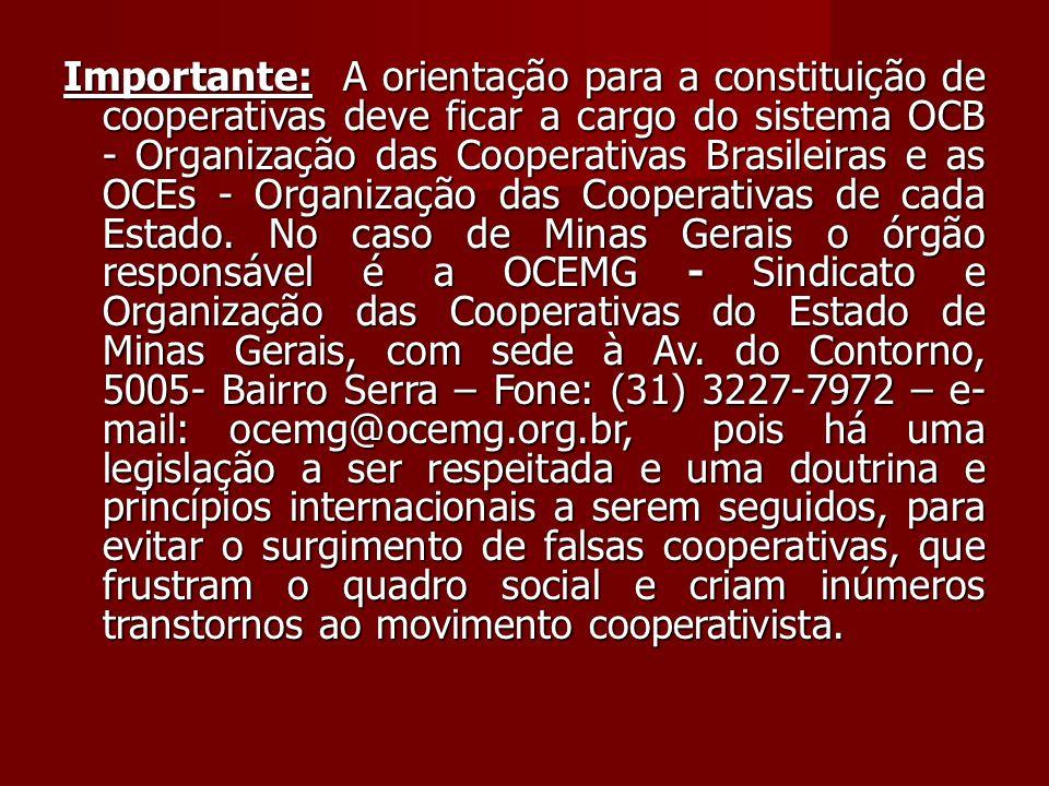 Importante: A orientação para a constituição de cooperativas deve ficar a cargo do sistema OCB - Organização das Cooperativas Brasileiras e as OCEs - Organização das Cooperativas de cada Estado.