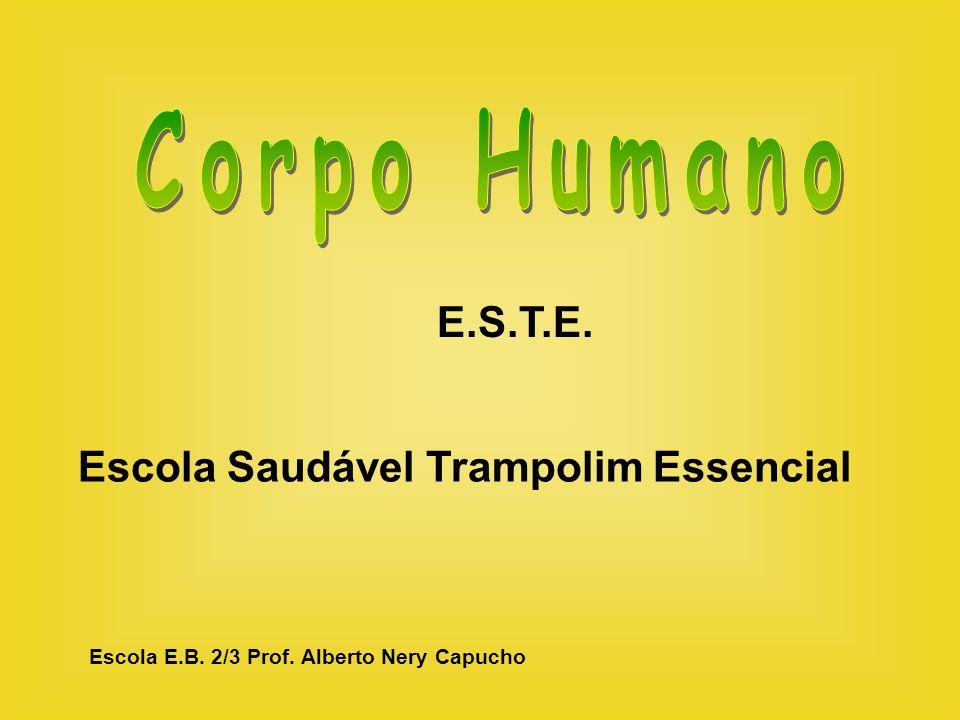 E.S.T.E. Escola Saudável Trampolim Essencial Escola E.B. 2/3 Prof. Alberto Nery Capucho