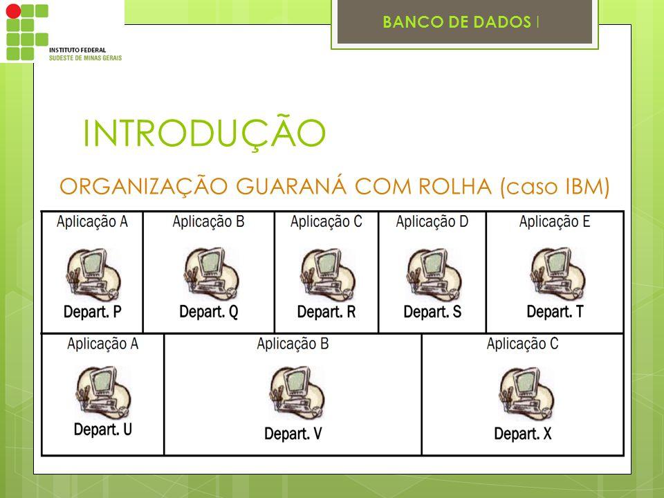 BANCO DE DADOS I INTRODUÇÃO ORGANIZAÇÃO GUARANÁ COM ROLHA (caso IBM)
