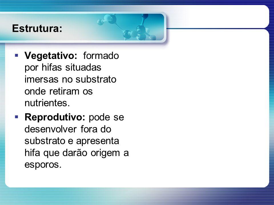 Estrutura: Vegetativo: formado por hifas situadas imersas no substrato onde retiram os nutrientes. Reprodutivo: pode se desenvolver fora do substrato