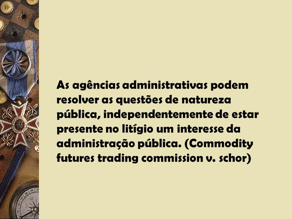 A questão da separação dos poderes. A relação público/privado (Thomas V. Union Carbide Agricultural. Co. (Licenciamento de produtos com afetação ambie