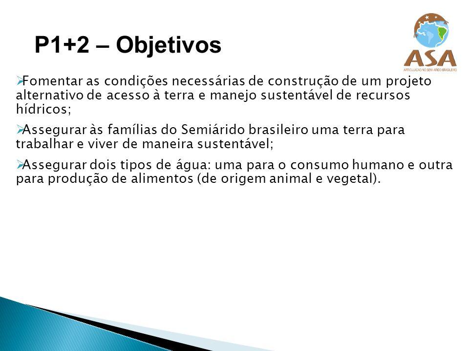 P1+2 – Objetivos Fomentar as condições necessárias de construção de um projeto alternativo de acesso à terra e manejo sustentável de recursos hídricos