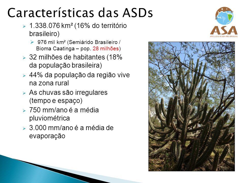 1.338.076 km² (16% do território brasileiro) 976 mil km² (Semiárido Brasileiro / Bioma Caatinga – pop. 28 milhões) 32 milhões de habitantes (18% da po