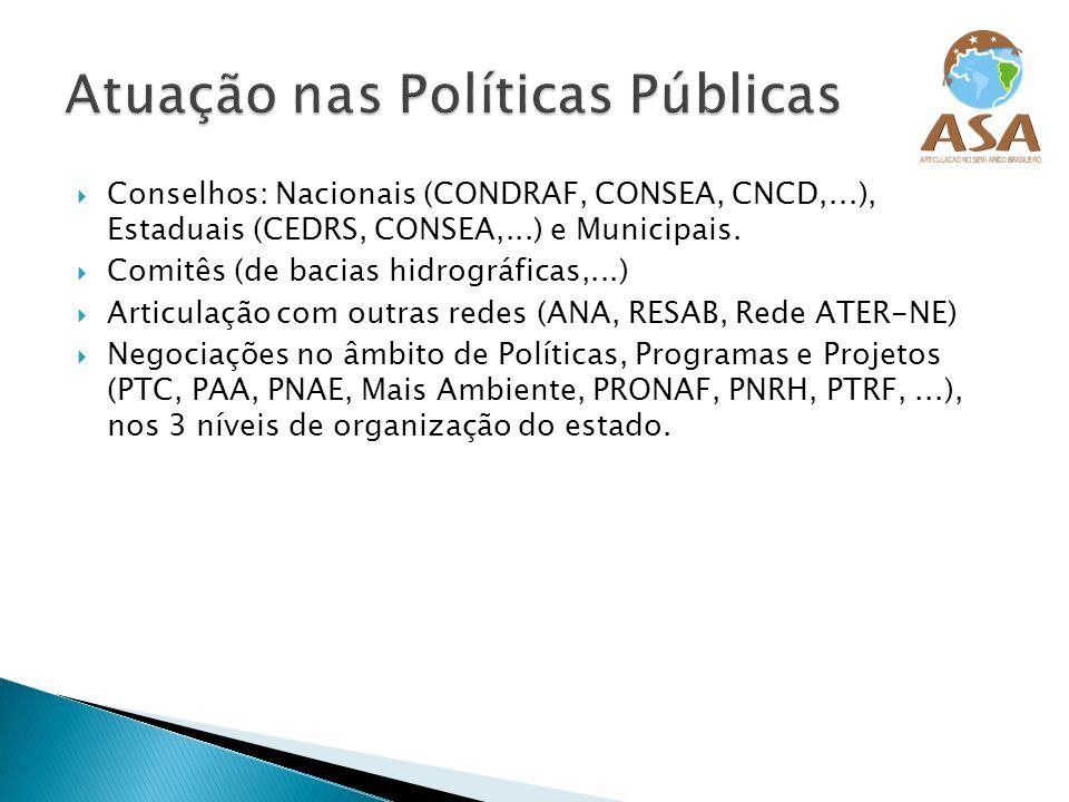 Conselhos: Nacionais (CONDRAF, CONSEA, CNCD,...), Estaduais (CEDRS, CONSEA,...) e Municipais. Comitês (de bacias hidrográficas,...) Articulação com ou