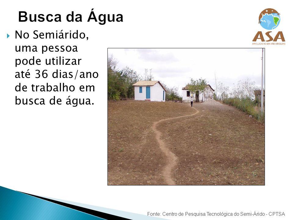 No Semiárido, uma pessoa pode utilizar até 36 dias/ano de trabalho em busca de água. Fonte: Centro de Pesquisa Tecnológica do Semi-Árido - CPTSA