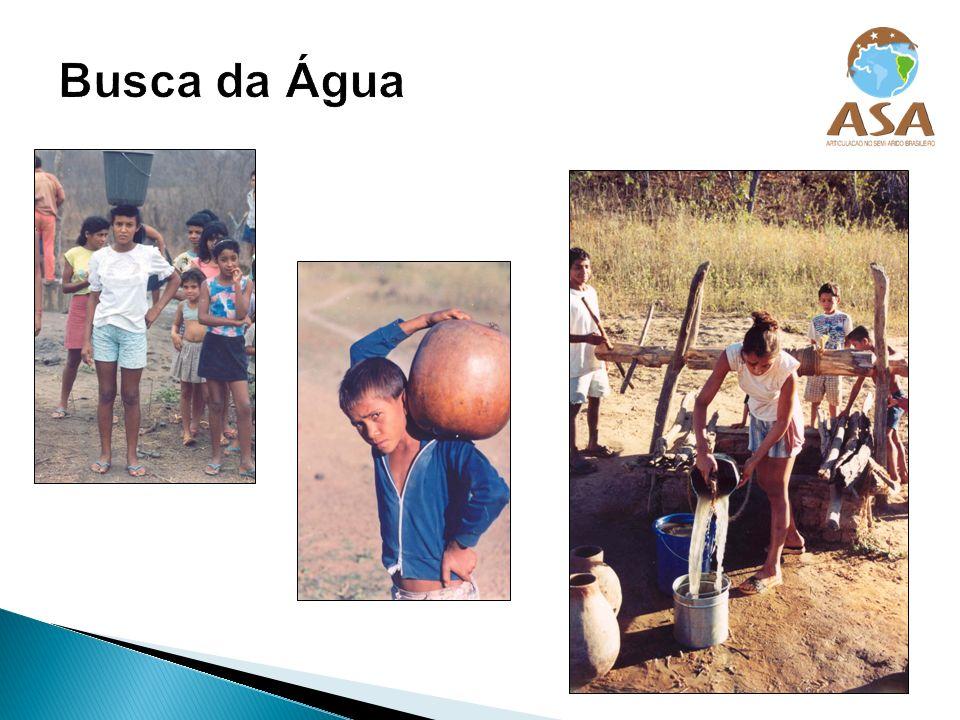 É um fórum que reúne cerca de 1.000 entidades da sociedade civil (sindicatos de trabalhadores rurais, associações de agricultores, cooperativas, igrejas, ONGs).