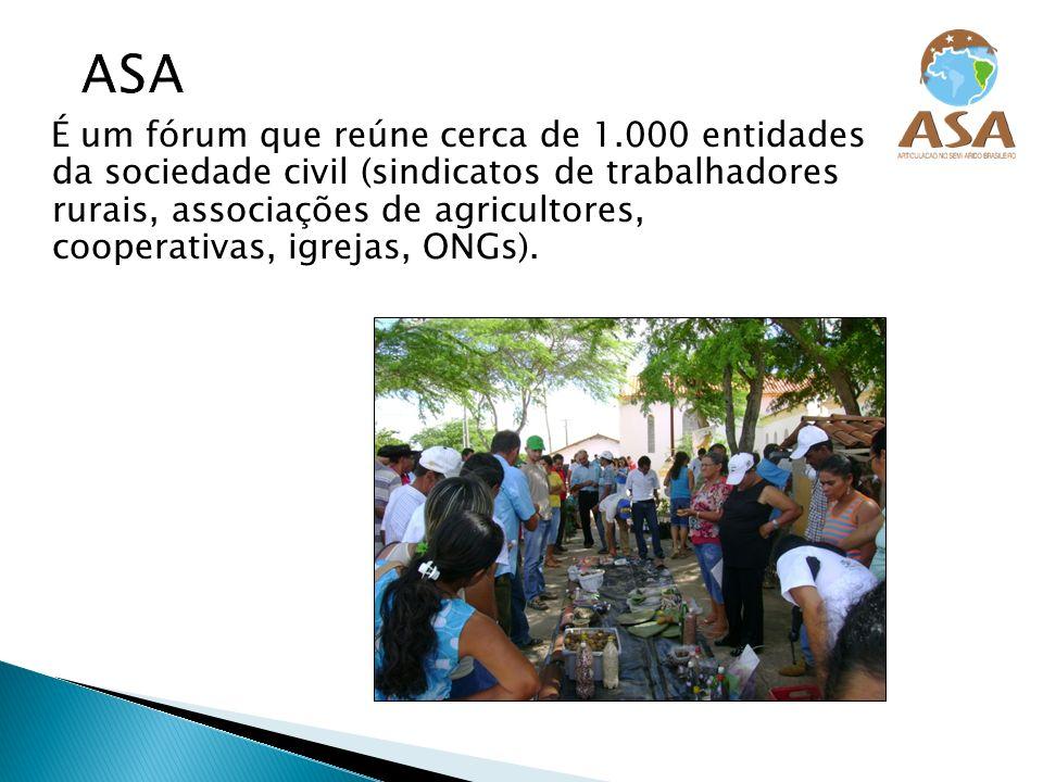 É um fórum que reúne cerca de 1.000 entidades da sociedade civil (sindicatos de trabalhadores rurais, associações de agricultores, cooperativas, igrej