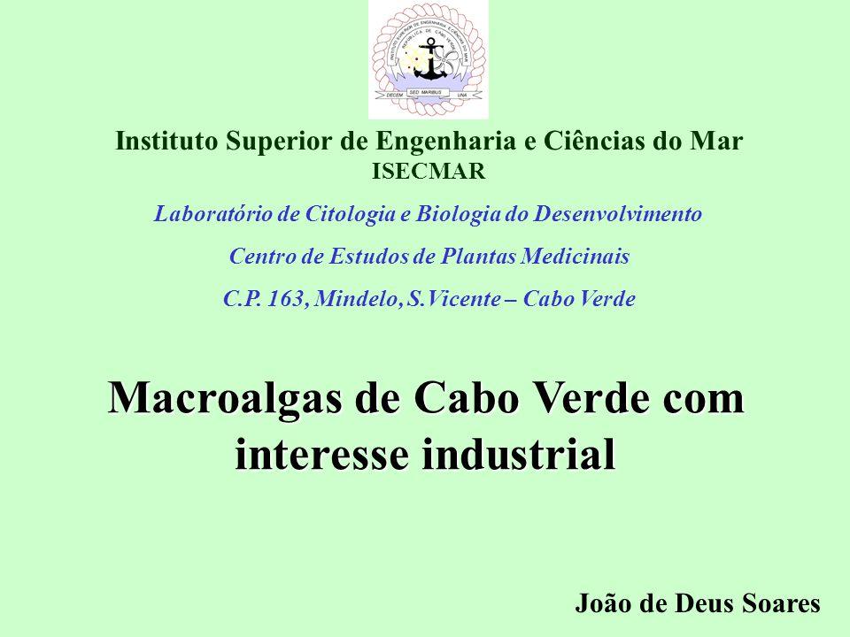 Instituto Superior de Engenharia e Ciências do Mar ISECMAR Laboratório de Citologia e Biologia do Desenvolvimento Centro de Estudos de Plantas Medicin