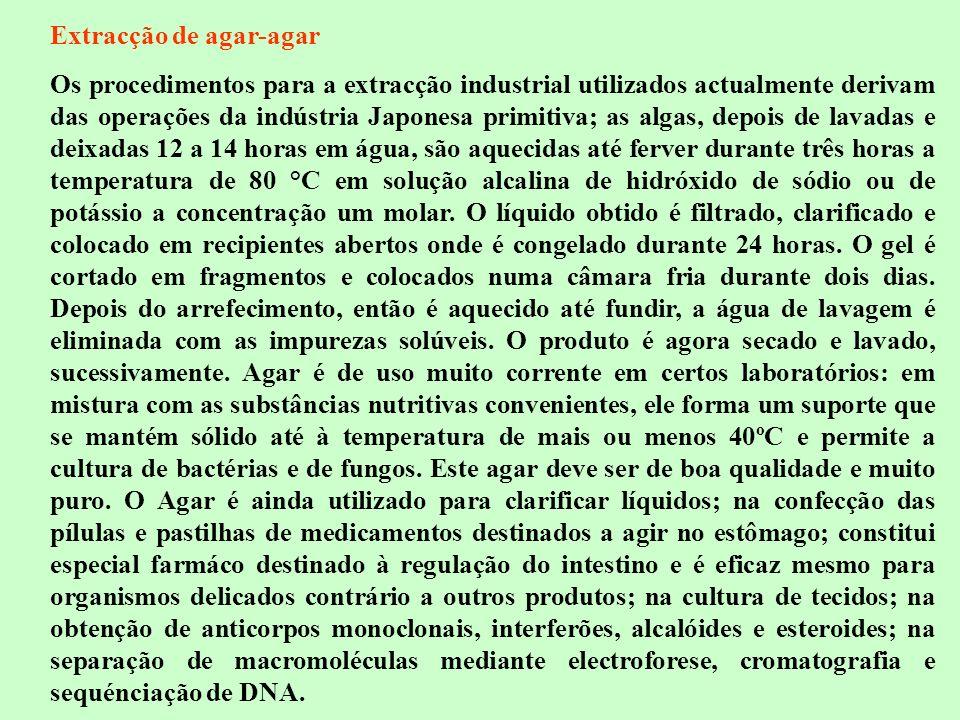 Extracção de agar-agar Os procedimentos para a extracção industrial utilizados actualmente derivam das operações da indústria Japonesa primitiva; as a