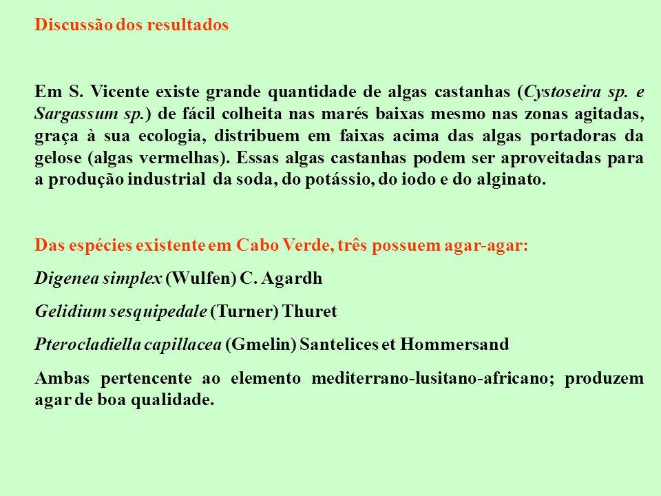 Discussão dos resultados Em S. Vicente existe grande quantidade de algas castanhas (Cystoseira sp. e Sargassum sp.) de fácil colheita nas marés baixas