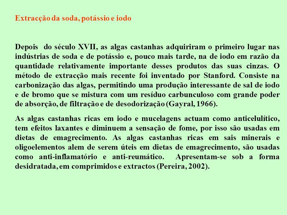 Extracção da soda, potássio e iodo Depois do século XVII, as algas castanhas adquiriram o primeiro lugar nas indústrias de soda e de potássio e, pouco