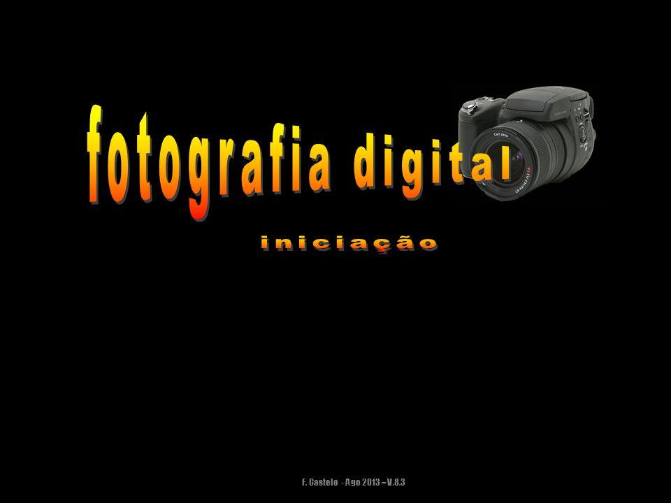 F. Castelo - Ago 2013 – V.8.3