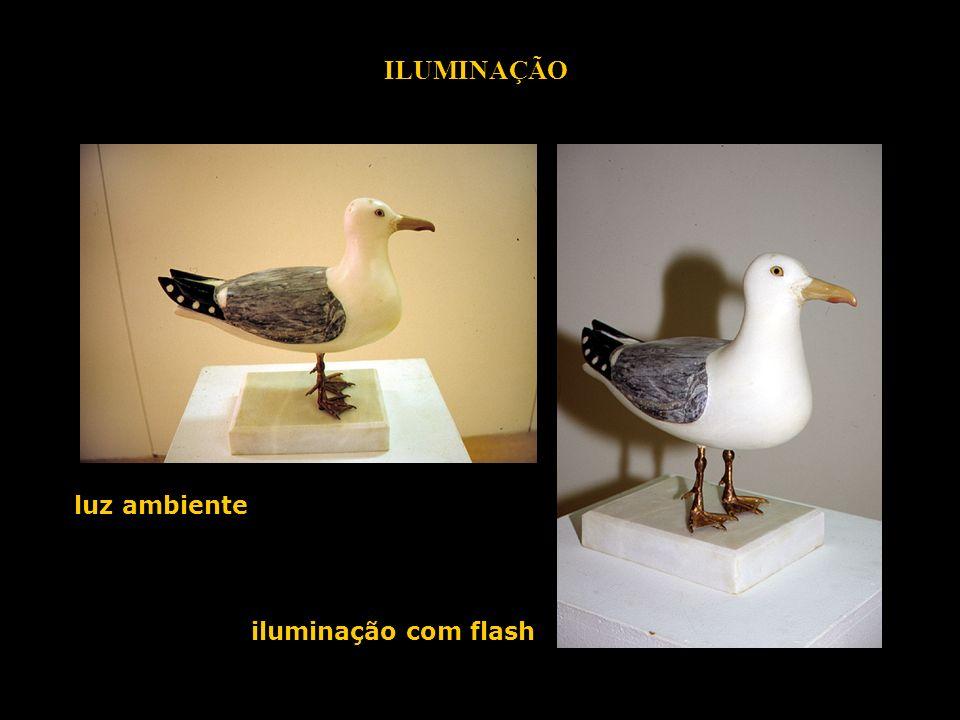 luz ambiente iluminação com flash ILUMINAÇÃO