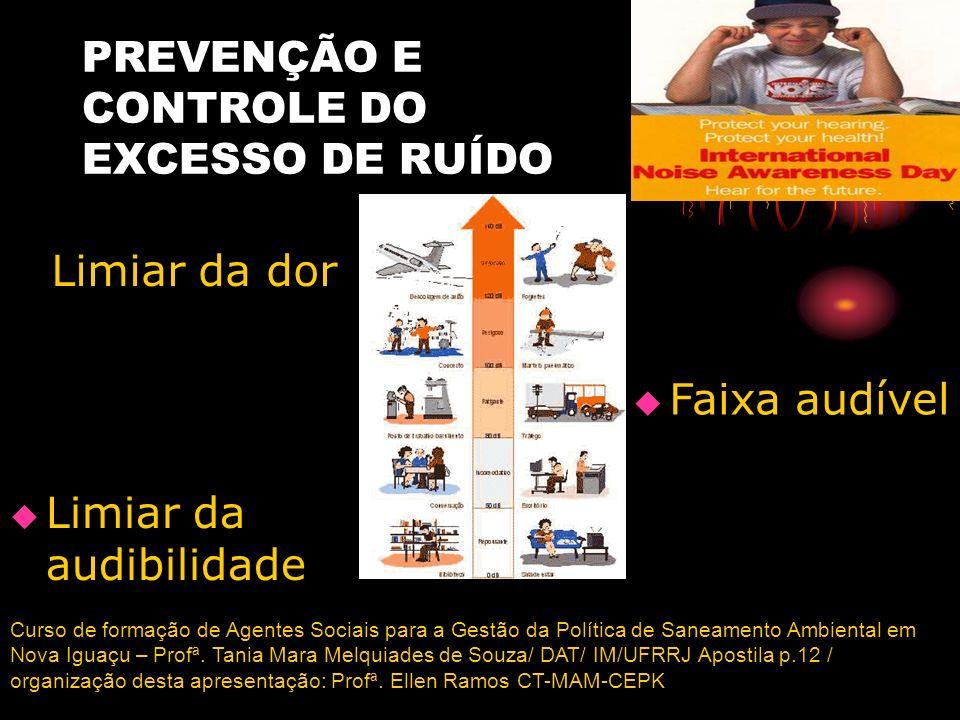 PREVENÇÃO E CONTROLE DO EXCESSO DE RUÍDO Curso de formação de Agentes Sociais para a Gestão da Política de Saneamento Ambiental em Nova Iguaçu – Profª
