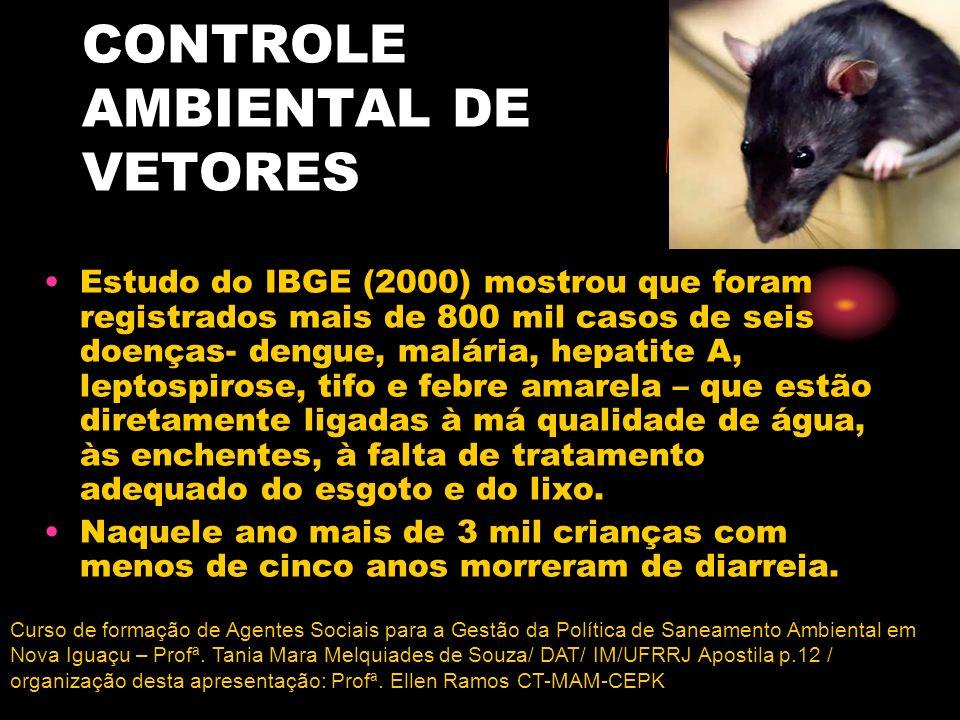 CONTROLE AMBIENTAL DE VETORES Estudo do IBGE (2000) mostrou que foram registrados mais de 800 mil casos de seis doenças- dengue, malária, hepatite A,