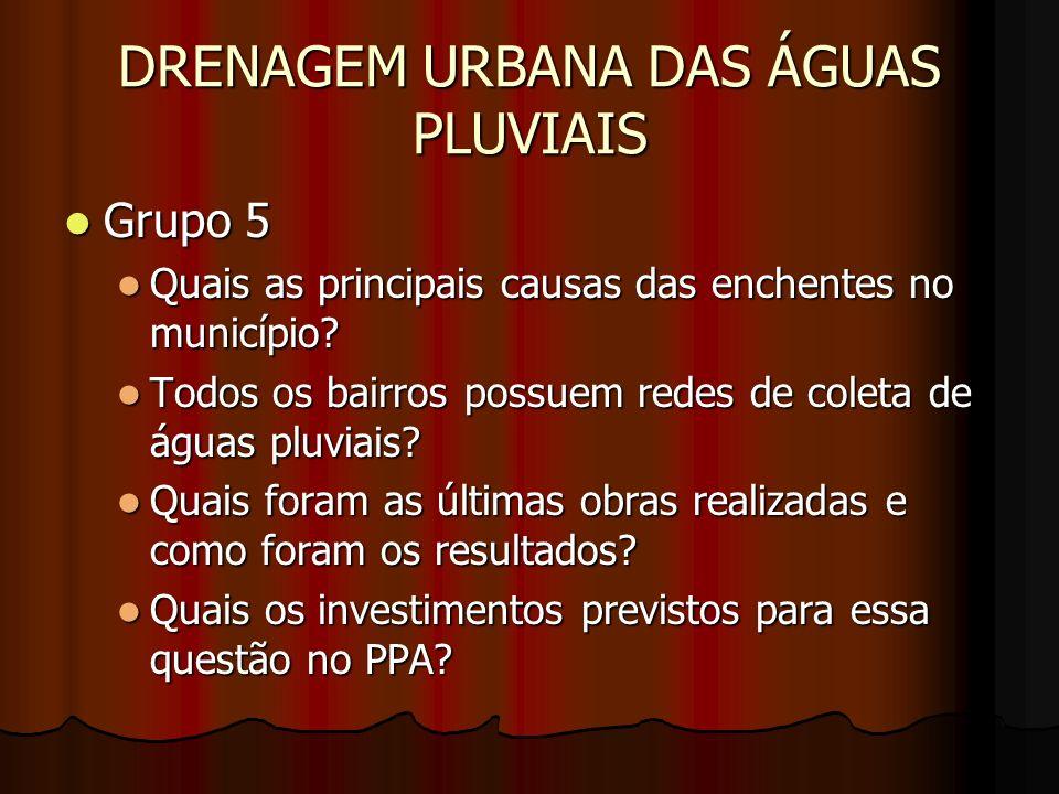DRENAGEM URBANA DAS ÁGUAS PLUVIAIS Grupo 5 Grupo 5 Quais as principais causas das enchentes no município? Quais as principais causas das enchentes no
